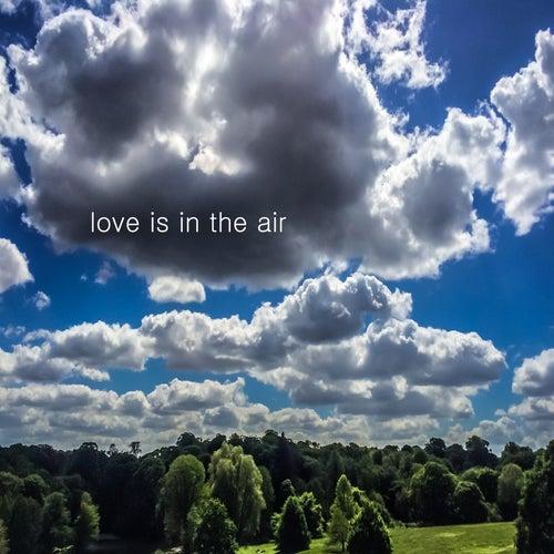 Love Is in the Air de Nick Rezo