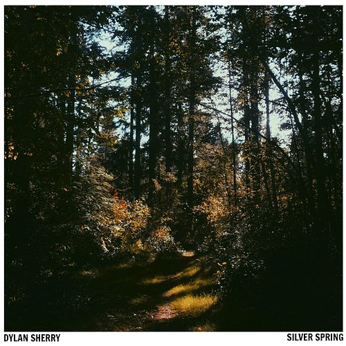 Silver Spring by Dylan Sherry