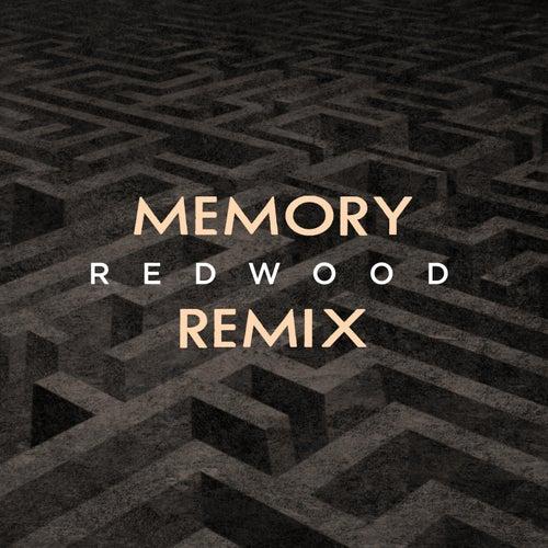 Memory (Redwood Remix) by Boogie Belgique