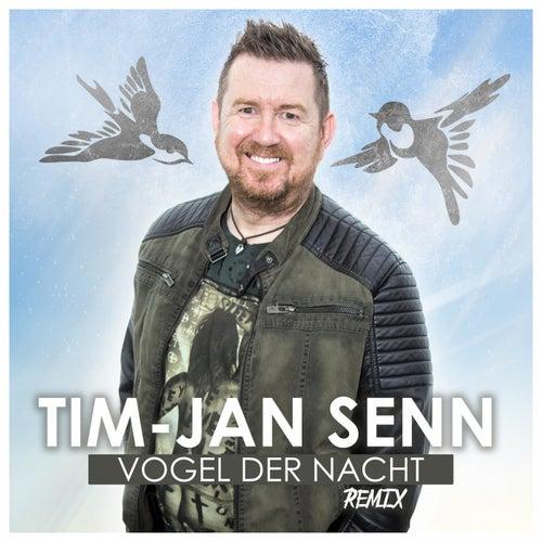 Vogel der Nacht (Remix 2019) von Tim-Jan Senn