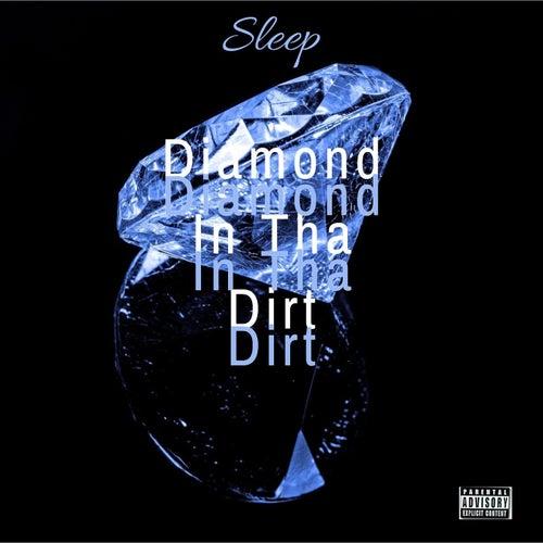 Diamond In Tha Dirt de Sleep