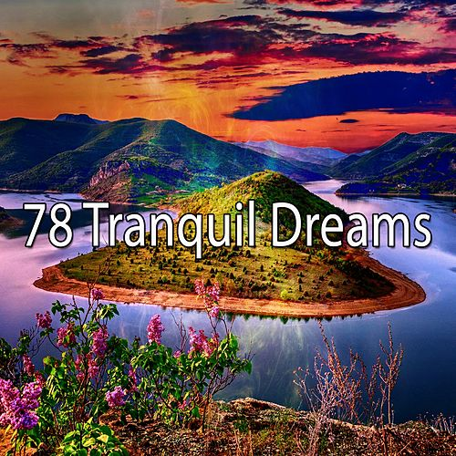 78 Tranquil Dreams by S.P.A
