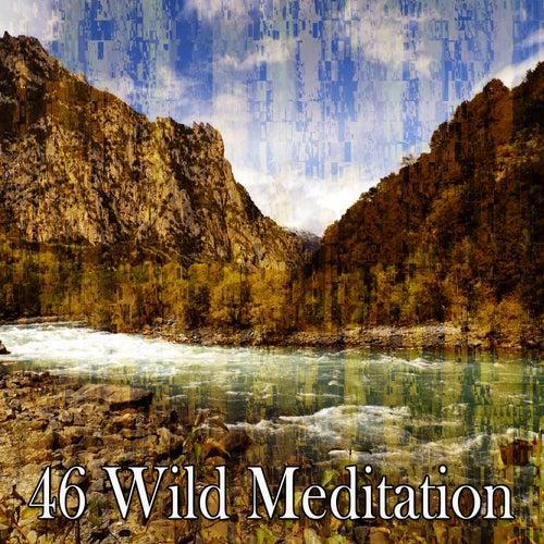 46 Wild Meditation von Yoga Workout Music (1)