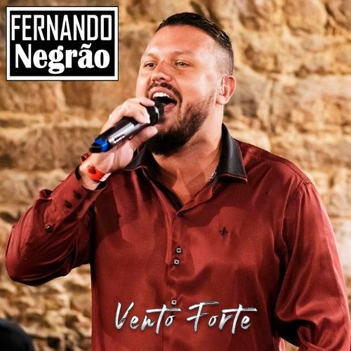 Vento Forte (Ao Vivo) de Fernando Negrão