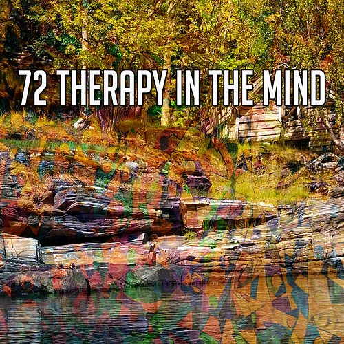 72 Therapy in the Mind von Study Concentration