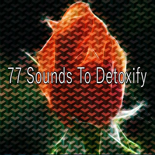 77 Sounds to Detoxify de Japanese Relaxation and Meditation (1)