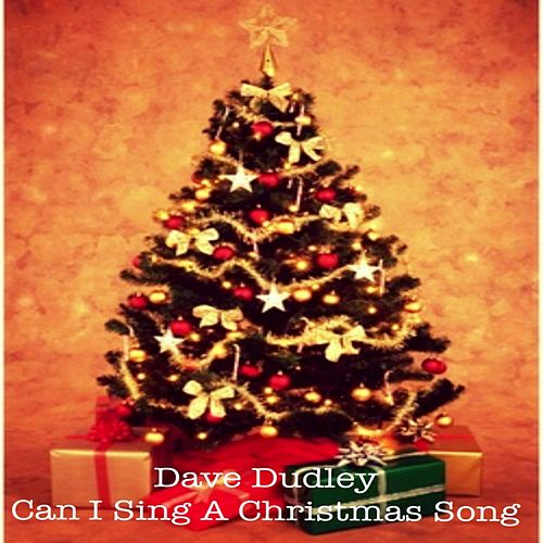 Can I Sing a Christmas Song by Dave Dudley