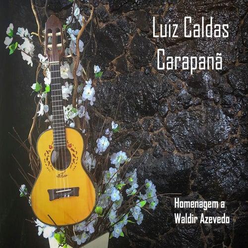 Carapanã: Homenagem a Waldir Azevedo by Luiz Caldas
