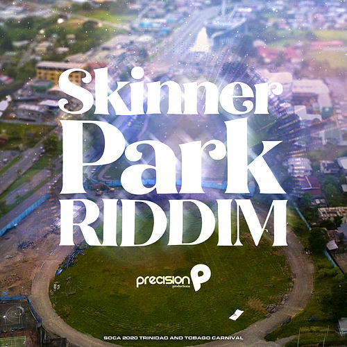 Skinner Park by Various Artists