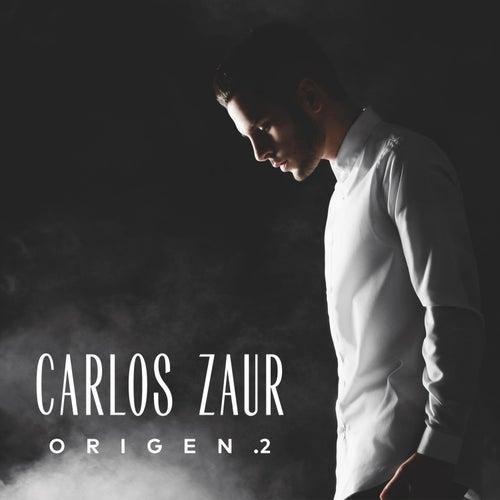 Origen .2 de Carlos Zaur