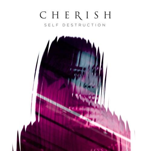 Self Destruction by Cherish