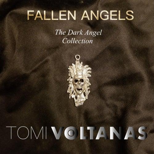 Fallen Angels de Tomi Voltanas