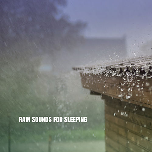 Rain Sounds For Sleeping by Rain Sounds and White Noise