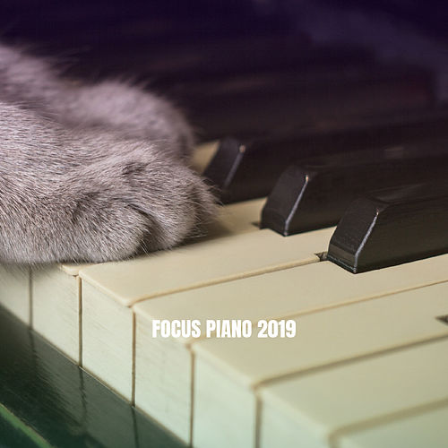 Focus Piano 2019 van Studying Music Group