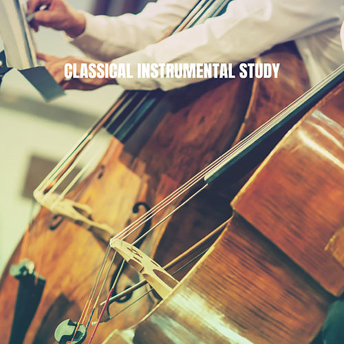 Classical Instrumental Study van Studying Music Group