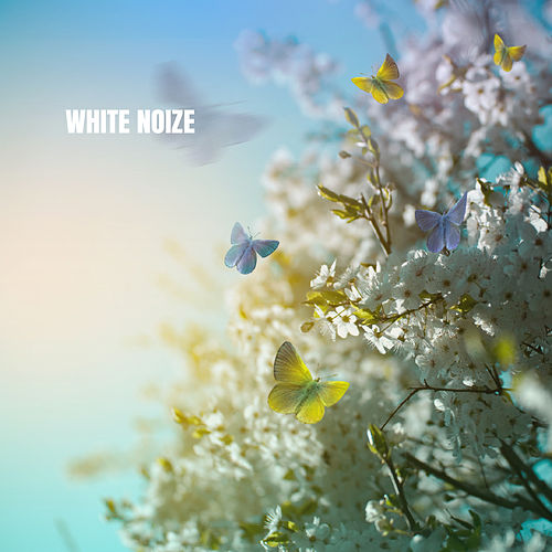 White Noize by White Noise Babies