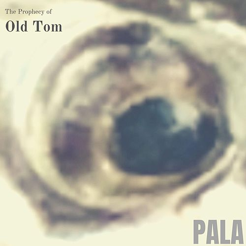 The Prophecy of Old Tom de Pala