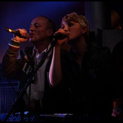 Live at Plan K 12.12.2009 de Section 25