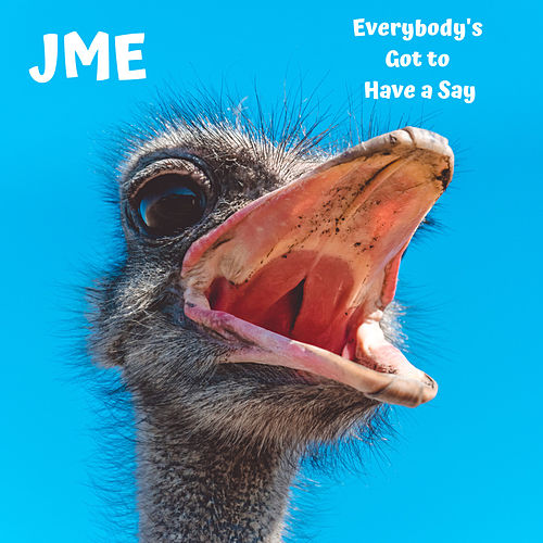 Everybody's Got to Have a Say di JME