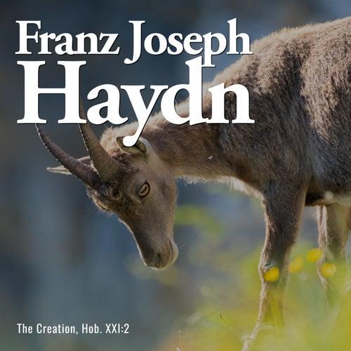 The Creation, Hob. XXI:2 by Franz Joseph Haydn