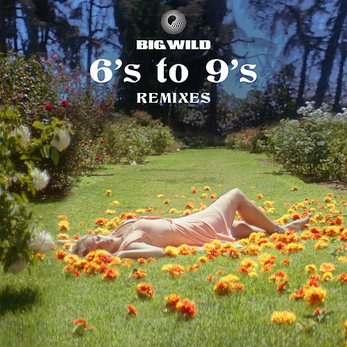 6's to 9's (Remixes) von Big Wild