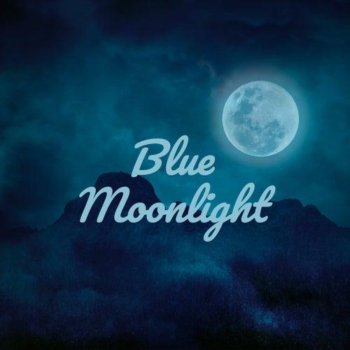 Blue Moonlight by Billy Walker