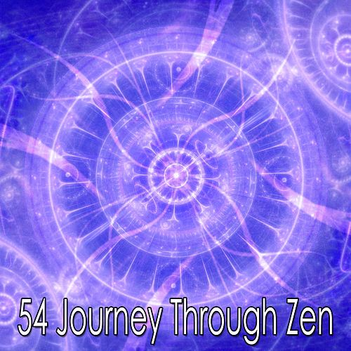 54 Journey Through Zen by Deep Sleep Meditation