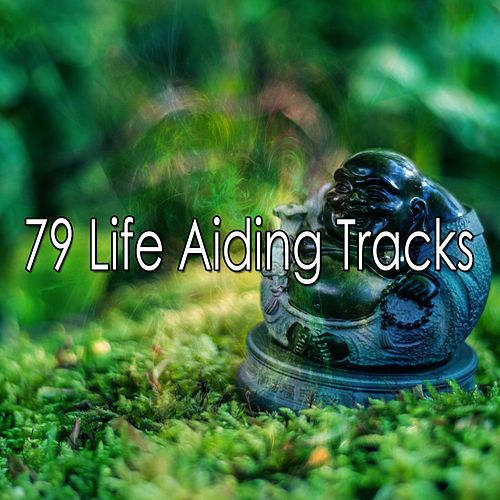79 Life Aiding Tracks by Exam Study Classical Music Orchestra