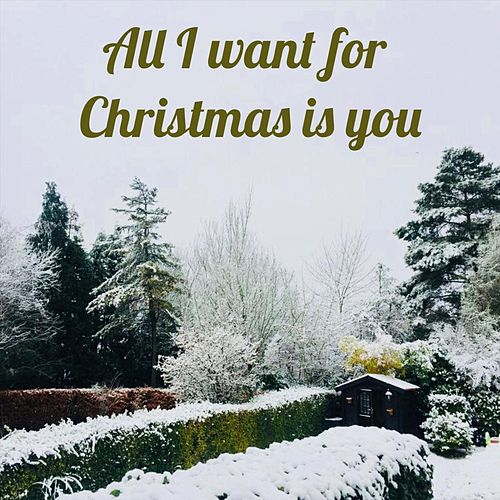 All I Want for Christmas Is You de Carlos Ambia