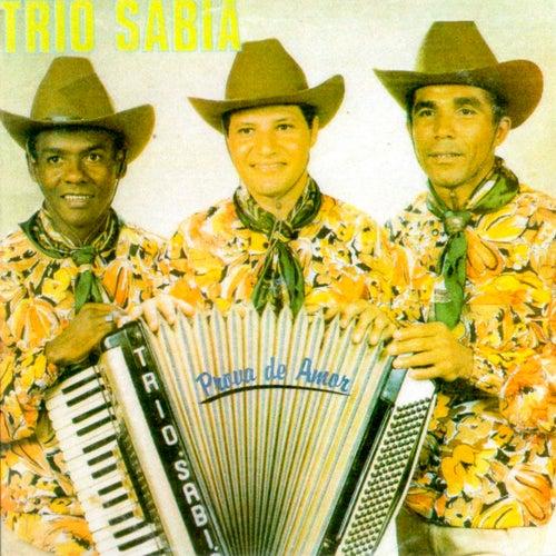 Prova de Amor von Trio Sabiá