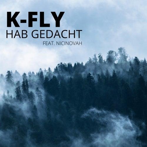 Hab gedacht von K-Fly