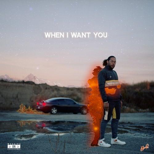 When I Want You by Devontée