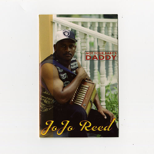 Not Your Baby's Daddy de Jo Jo Reed