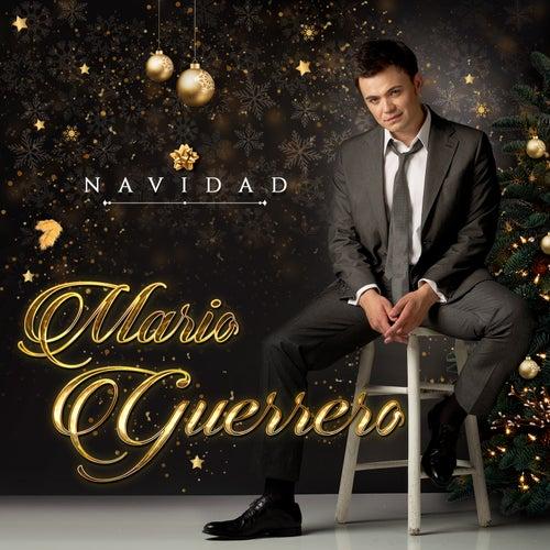 Blanca Navidad by Mario Guerrero