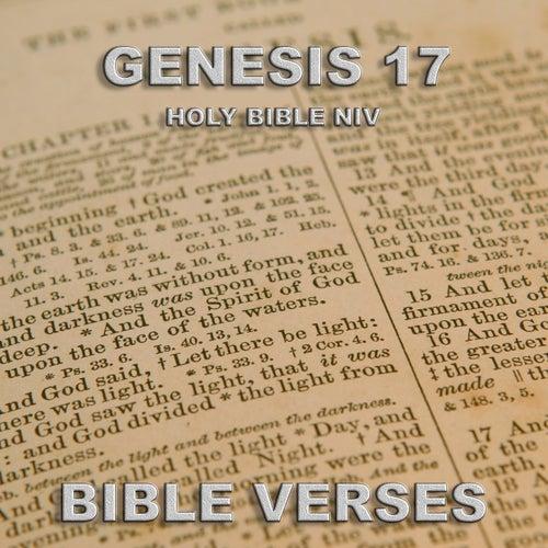 Holy Bible Niv Genesis 17, Pt 1 de Bible Verses