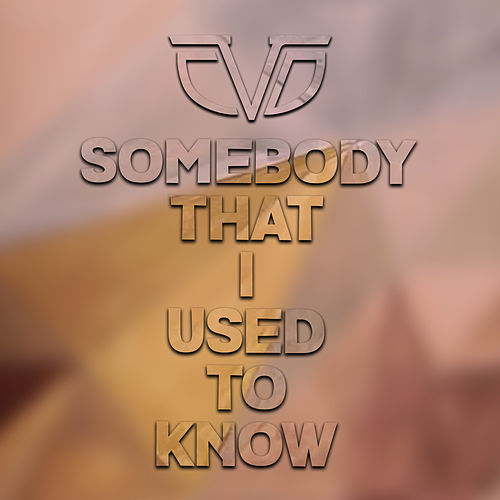 Somebody That I used To Know by Chasing Da Vinci