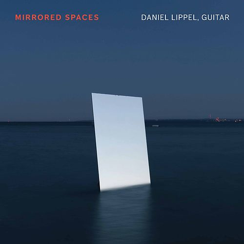 Mirrored Spaces by Daniel Lippel