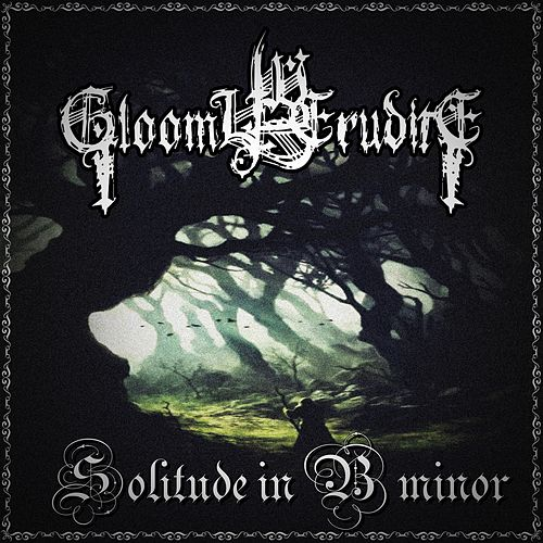 Solitude in B Minor de Gloomy Erudite