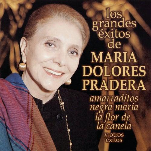 Amarraditos de Maria Dolores Pradera