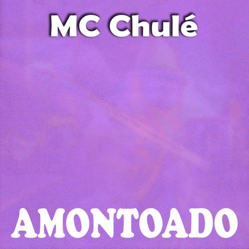 Amontoado de MC Chulé