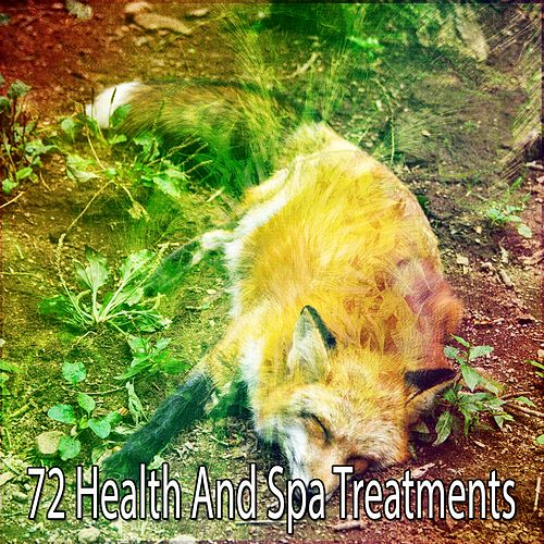 72 Health and Spa Treatments by Trouble Sleeping Music Universe