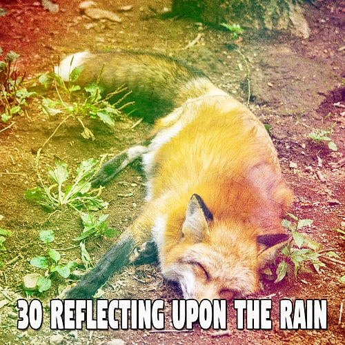 30 Reflecting Upon the Rain by Rain Sounds and White Noise