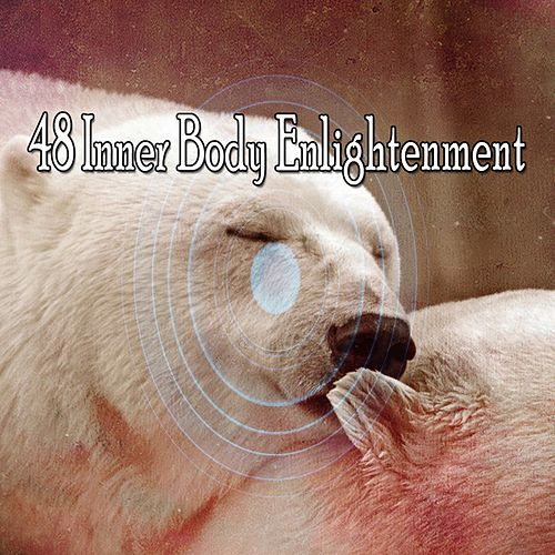 48 Inner Body Enlightenment von Rockabye Lullaby
