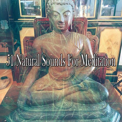 51 Natural Sounds for Meditation von Relaxing Mindfulness Meditation Relaxation Maestro
