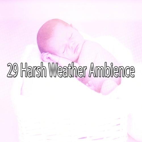 29 Harsh Weather Ambience by Rain for Deep Sleep (1)