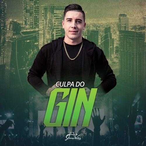 Culpa do Gin by Jhonny Welker