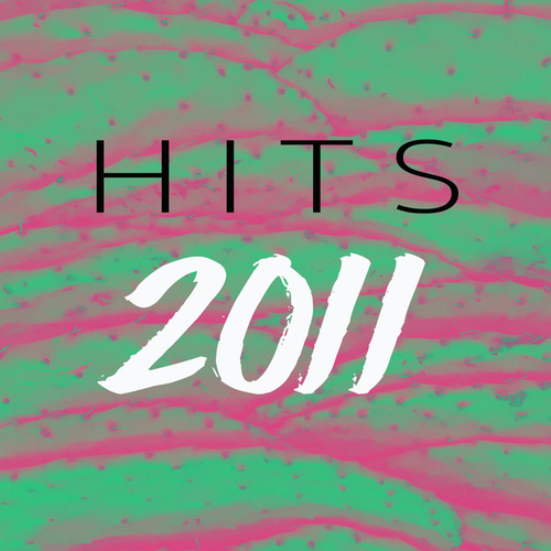 2011 Hits by Various Artists