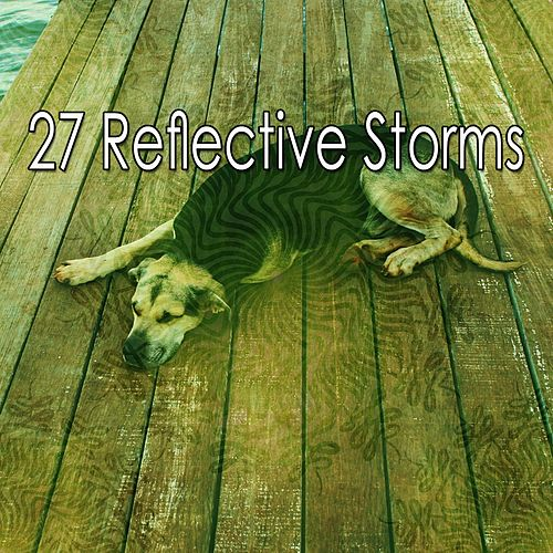 27 Reflective Storms by Rain Sounds and White Noise