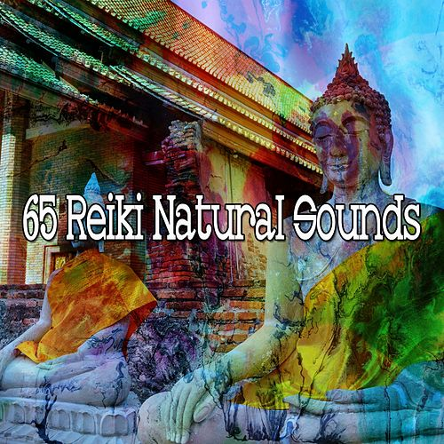65 Reiki Natural Sounds von Musica Relajante