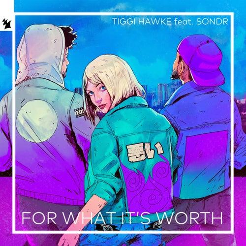 For What It's Worth by Tiggi Hawke